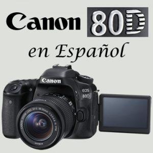 Icono de la Canon 80D